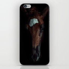 Horse In The Dark iPhone Skin