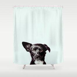 Hello Dog Shower Curtain