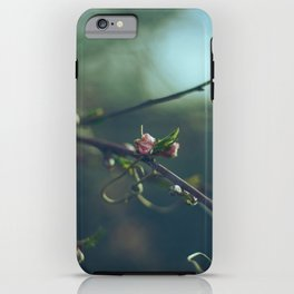 BUDDING iPhone Case