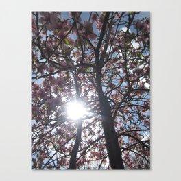 Burst of Light Canvas Print
