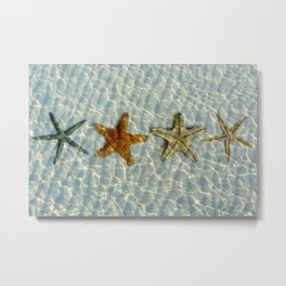 Beautiful starfishes under water Metal Print