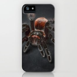 The Scary Spider iPhone Case