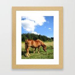 wind in the fields Framed Art Print