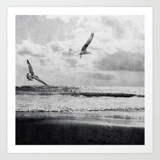 Seascape Freedom Art Print