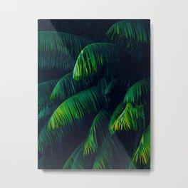 Green Lush Tropical Palm Tree Leaves Dark Background Metal Print