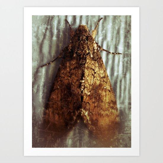 Well....it's a moth. Art Print