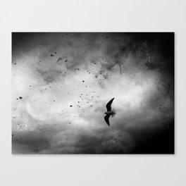 Across The Sky Canvas Print