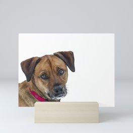 Puppy Dog Eyes Mini Art Print