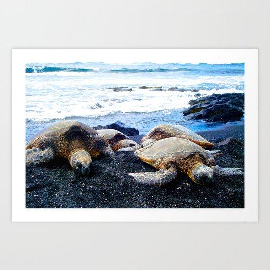 Black Sand Beach Turtles Art Print