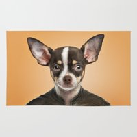 chihuahua Area & Throw Rugs featuring Chihuahua  by Life on White Creative