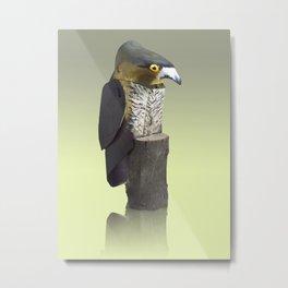 Sparrow Hawk Metal Print