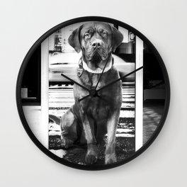 Urban City Dog Wall Clock