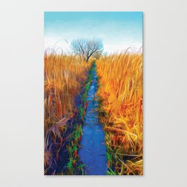 Wetland Boardwalk Canvas Print