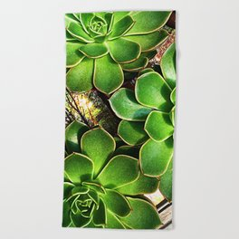 3 Succulents Beach Towel