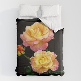 Daybreak roses on black Comforters