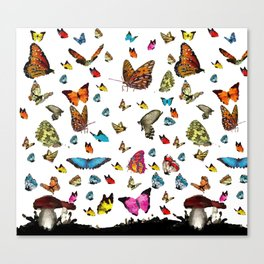 Butterfly´s friends Canvas Print