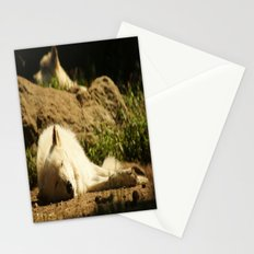 Sleeping white wolf in the summer sun Stationery Cards