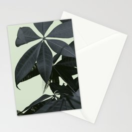 Pachira Aquatica #3 #foliage #decor #art #society6 Stationery Cards