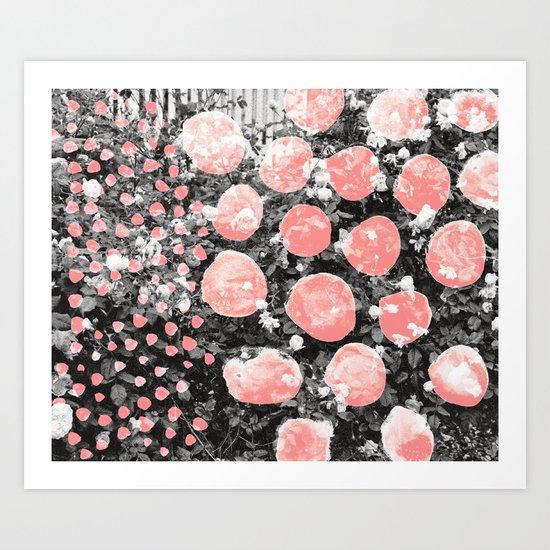 Rose Bush Art Print