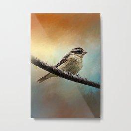 Wisconsin Songbird ~ Ginkelmier Inspired Metal Print