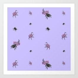Spiderflower Art Print