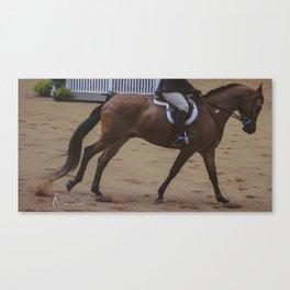 Cantering Bay Horse Canvas Print