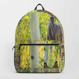 Double Take - Pair of Young Mule Deer Hiding in Autumn Aspens Backpack