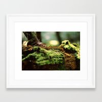 moss Framed Art Prints featuring Moss by Anna Bailey