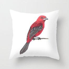 Brazilian Tanager Throw Pillow