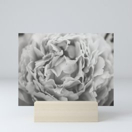 Petals of a Peony in Black and White Mini Art Print