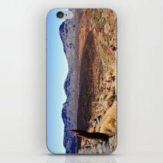 Teide National Park iPhone & iPod Skin