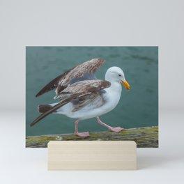 Walking Gull Mini Art Print