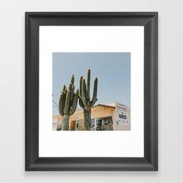 cactus 2 / california desert Framed Art Print