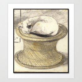 Sleeping Cat on Wicker Table Art Print