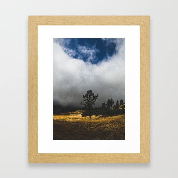 Meadow Glow Framed Art Print