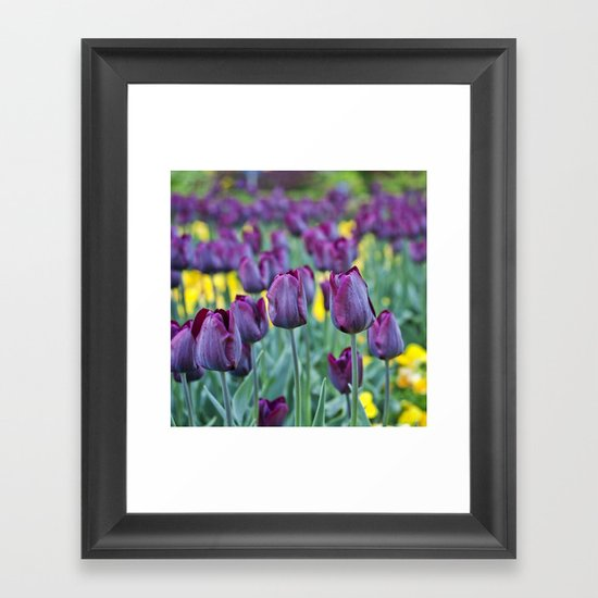 morados Framed Art Print