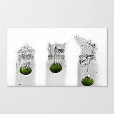 The Three Musketeers Canvas Print