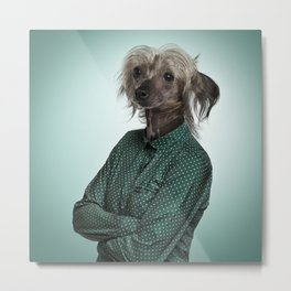 Chinese hairless crested dog Metal Print