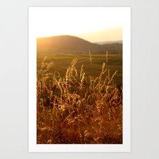 Gold Warm Light - JUSTART © Art Print