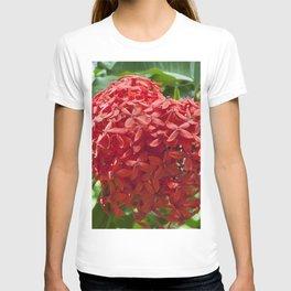 Ixora Coccinea T-shirt