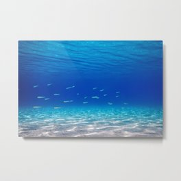 School of Fish Swimming over Sand Bottom in the Tropical Sea Metal Print