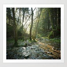 Dans les bois. Art Print