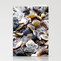 shells Stationery Cards featuring Shells by Anne Seltmann