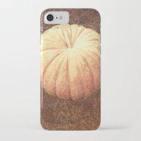 pumpkin iPhone & iPod Cases featuring Pumpkin by Yellowstone Photo Studio