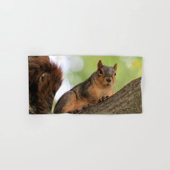Cutie Squirrel Hand & Bath Towel