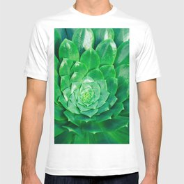 Botanical Gardens Succulent #686 T-shirt