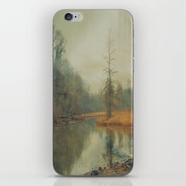 Winter Fog on Theodore Roosevelt Island iPhone Skin