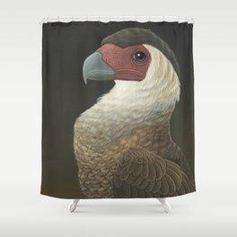 Guadalupe Caracara (Caracara lutosa) Shower Curtain
