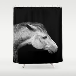 Casper   Horse Photography   Animal Art   Minimalism   Nature   black-and-white Shower Curtain