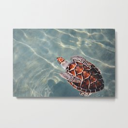 tortoise #society6 #decor #buyart Metal Print